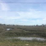 Marsh in Garden City Beach